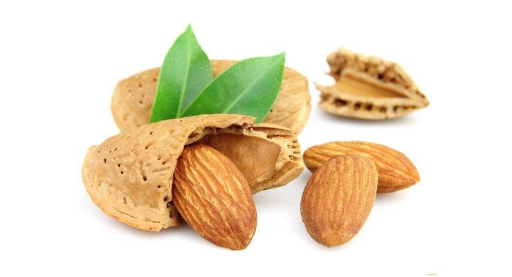 kacang-almond-hawagym-indonesia